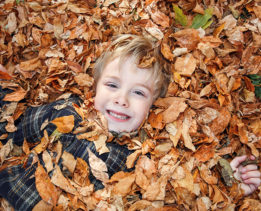 Young boy playing in a pile of fall leaves