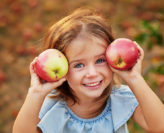 pick your own apples