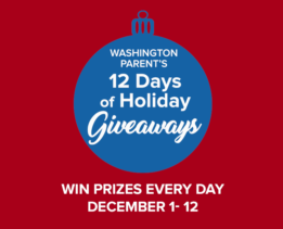 12 Days of Holiday Giveaways