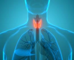 thyroid health awareness month