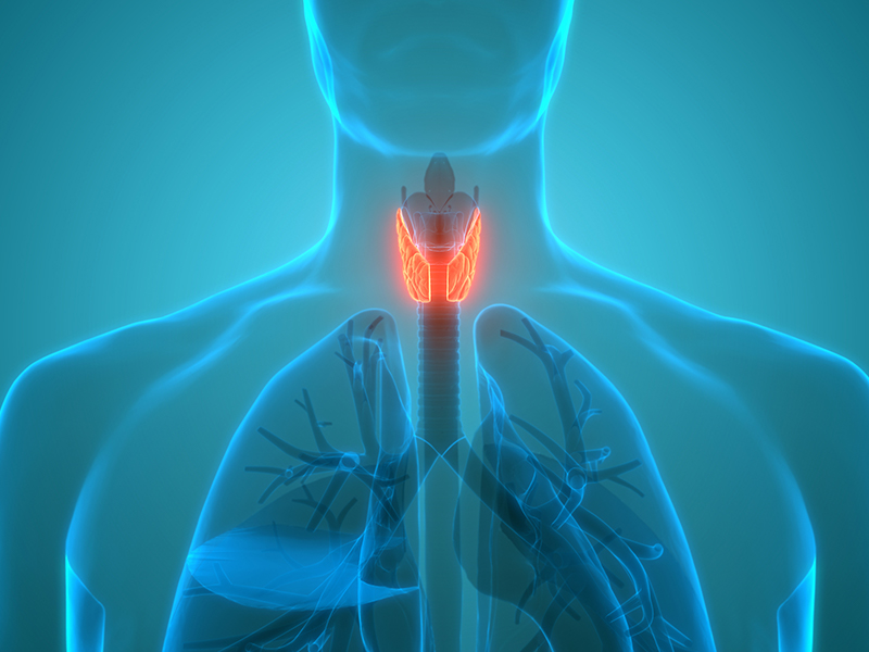 thyroid health awareness month