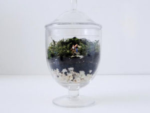Easy Family Terrarium for National Craft Month
