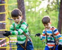 7 Reasons Why Parents Should Send Their Child to Camp